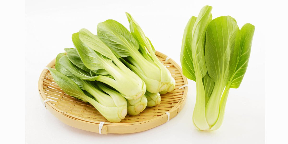 How to Cut Bok Choy – Cutting Tips Like a Total Professional